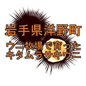 サムネ キタムラサキウニ