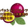 サムネ パッションフルーツの栄養素について