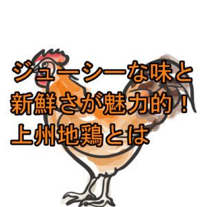 サムネ 群馬県の特産食品 上州地鶏