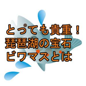 サムネ 琵琶湖の宝石「ビワマス」