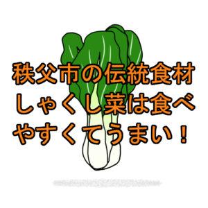 サムネ しゃくし菜